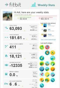 Fitbit-contoh laporan mingguan